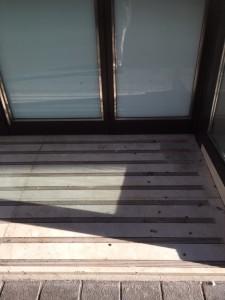 Hall d'immeuble Zara - croquettes pour chien